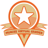 Logansport IN Auto Deploy Munzee Garden
