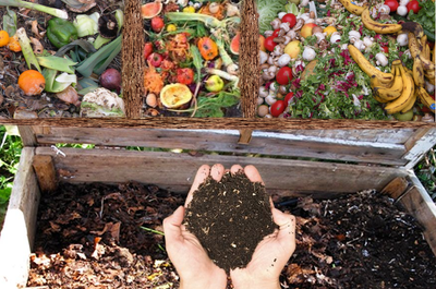 Home Composting Guide