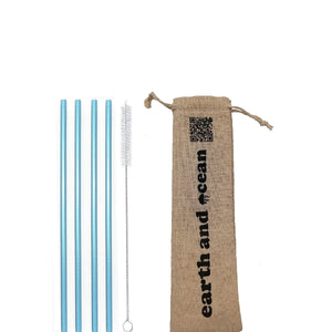 Stainless Steel Straws (set of 4 + Free Cleaning brush) in pouch