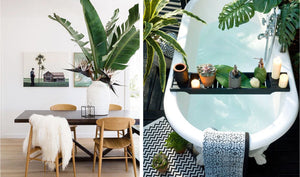 Inspiration: Botanical Interiors 4