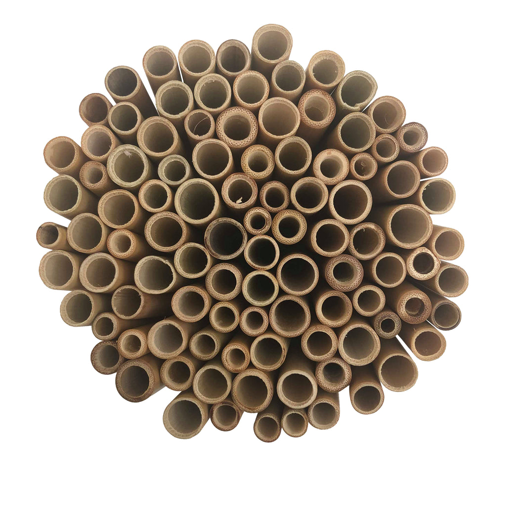 Bamboo Straws - Trade & Wholesale Wooden Straw - Reusable Straw Online