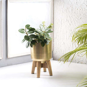 Flora Table Planter- Set of 2