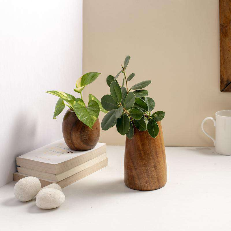 Teak Sculpture Planter- Set of 2