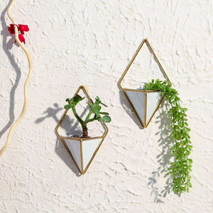 Diamond Planters traingle planters Wall Decor apartment18