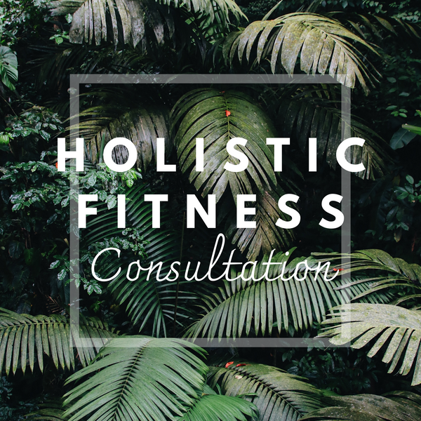 Holistic Fitness Consultation (60 minutes)