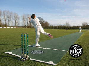 Flicx Cricket Match Pitch