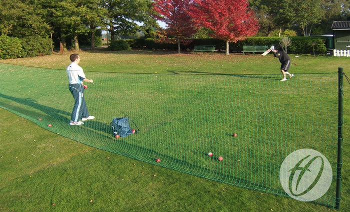 Cricket Throw Down System