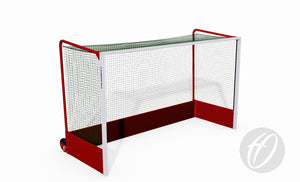 Integral Weighted Hockey Goals