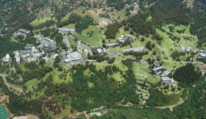 3D Hillside Campus Aerial View and Map