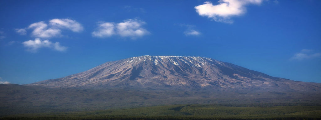 mount kilimanjaro, tanzania, peaberry coffee blog