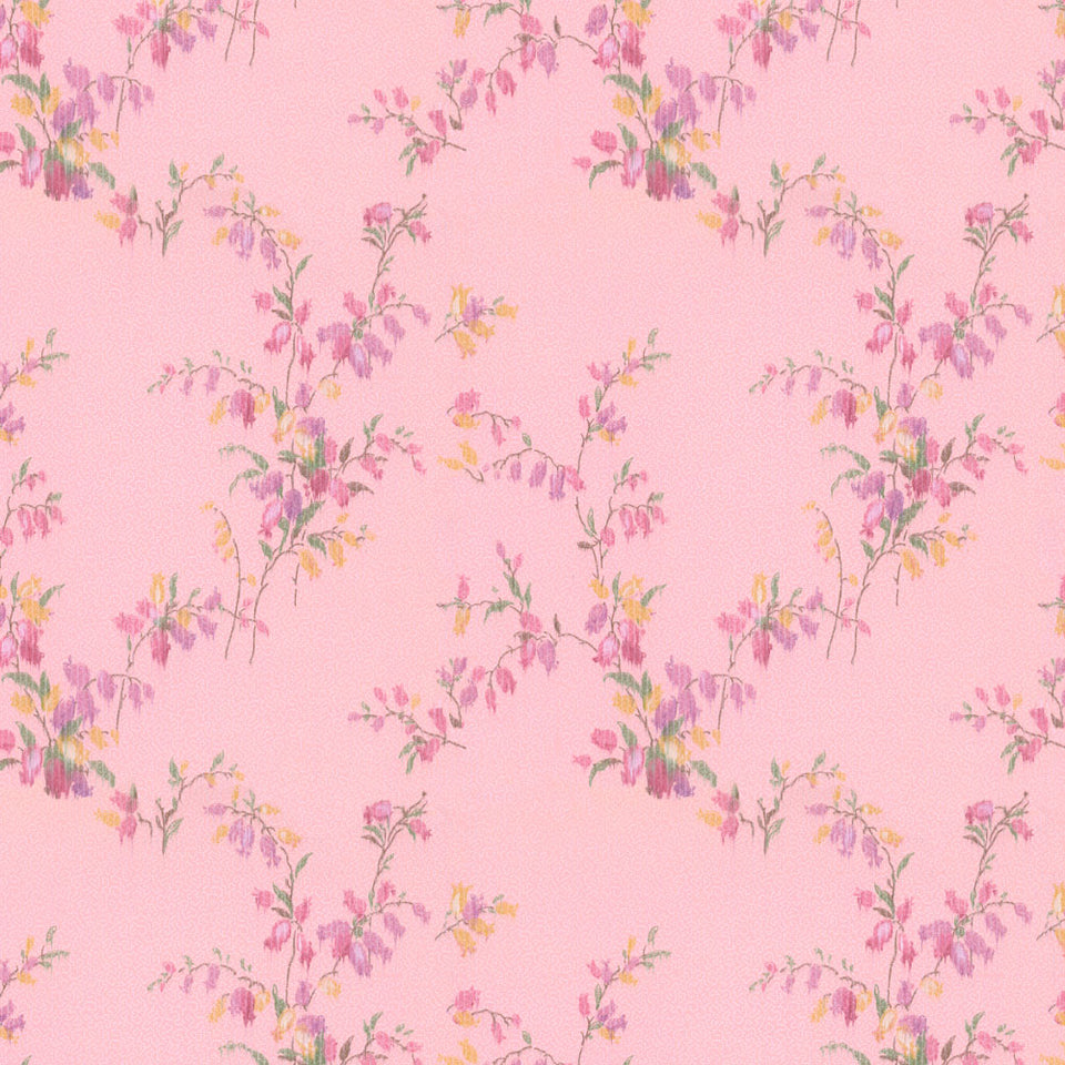 Dottie Wallpaper