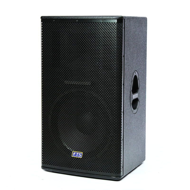 FTS-1115-MKII 15  Single Painted Speaker