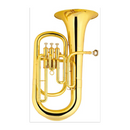 FTS-AWD-732 Fts Euphonium Gold Lacquer (4502956867651)