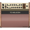 TC Helicon HARMONY V60 2-Channel Acoustic Amplifier