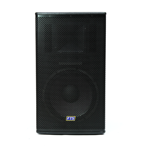 "FTS-1115-MKII 15"" Single Painted Speaker"