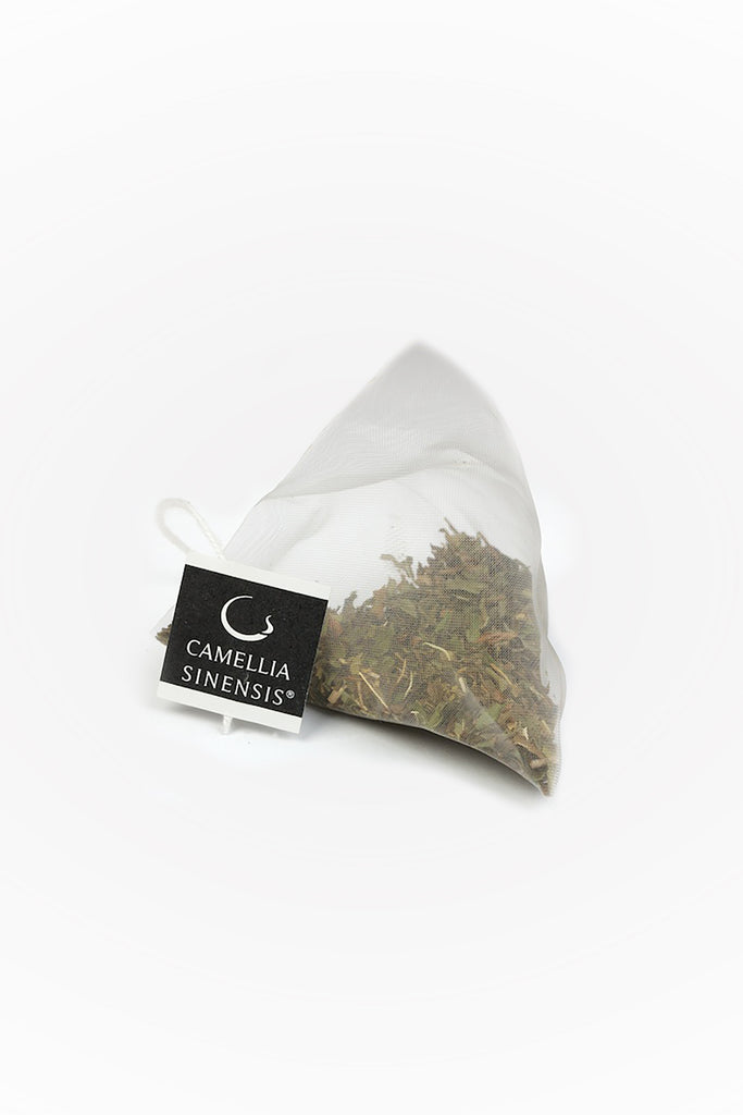 Mint Green Tea - Camellia Sinensis
