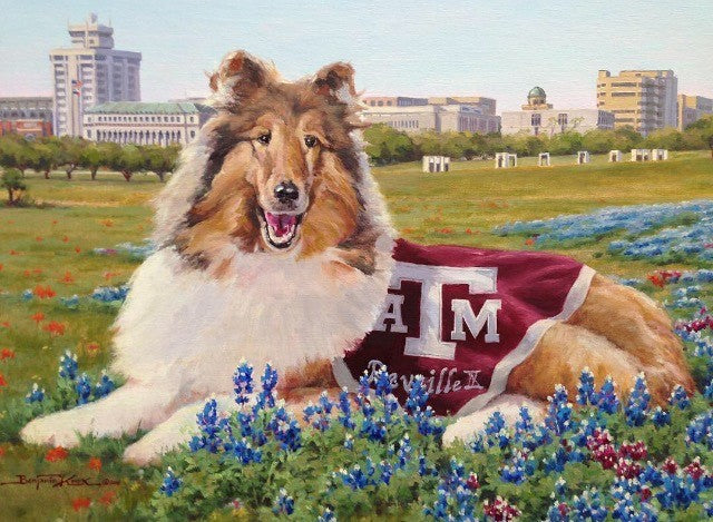 Reveille in Bluebonnets - Texas A&M University - Print - Benjamin Knox Fine Art Gallery