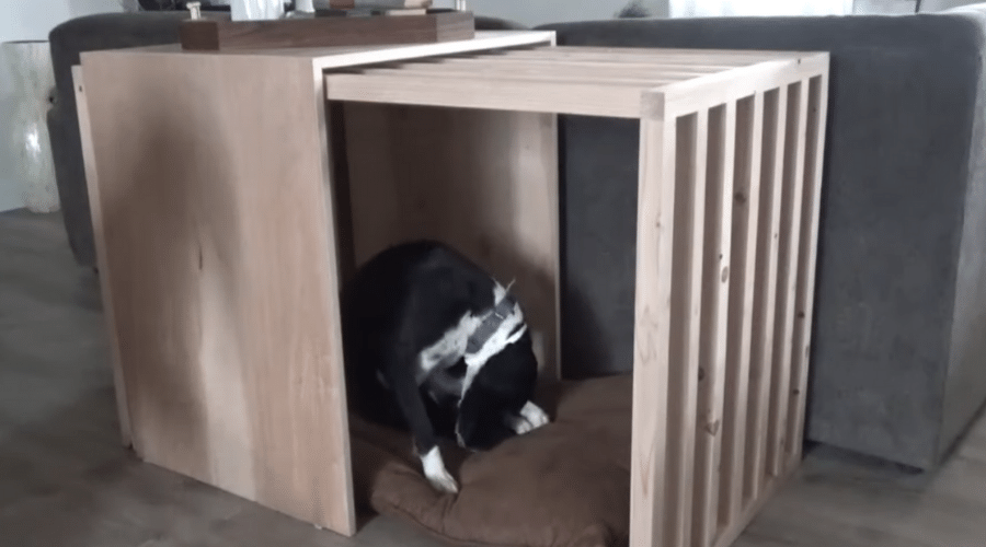 5 DIY Modern Dog Crate Ideas You Can Make on Your Own