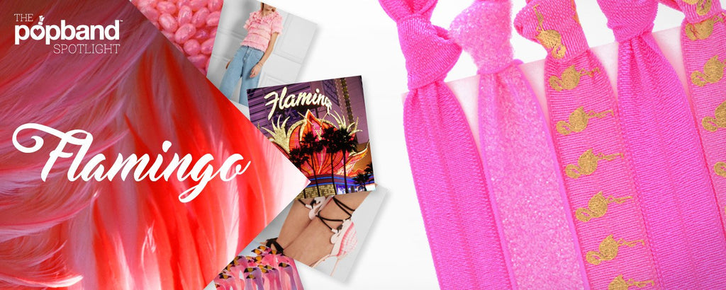 Spotlight on... Flamingo