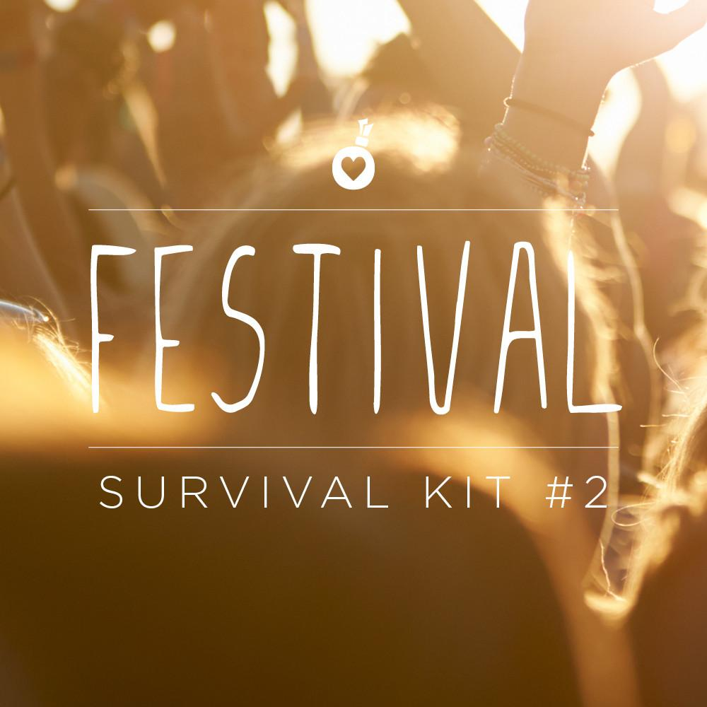 Festival Survival Hair Kit #2 | Popband London