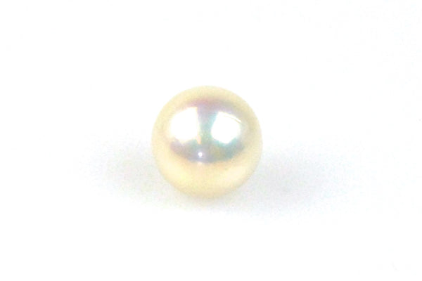 giant ivory color oval pearl