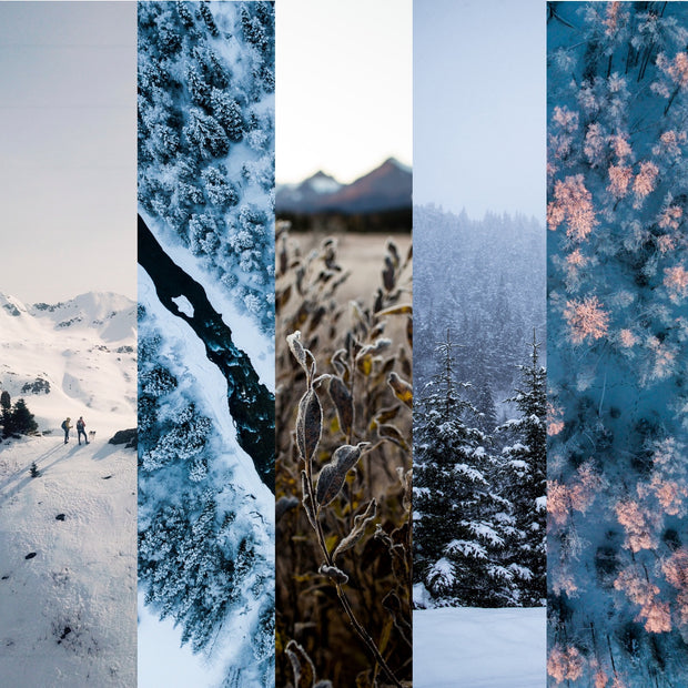 Winter Postcard Set