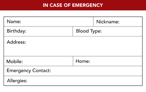 Ciclo Emergency Card Template