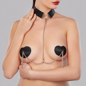 le burlesque collar & pasties
