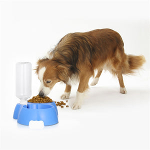Dual Detachable Dog Stainless Steel Food and Water Bowl Set