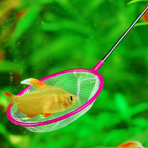 Quick-Net Fish Tank Aquarium Wire Mesh Catch Net