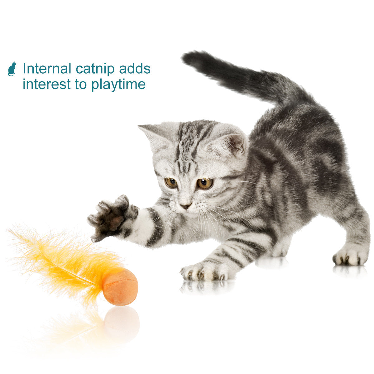 6 Pack Toy Balls for cats and kittens (Catnip, Feather, Built-in Bell)