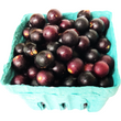 Muscadine Grapes, 1 Pint
