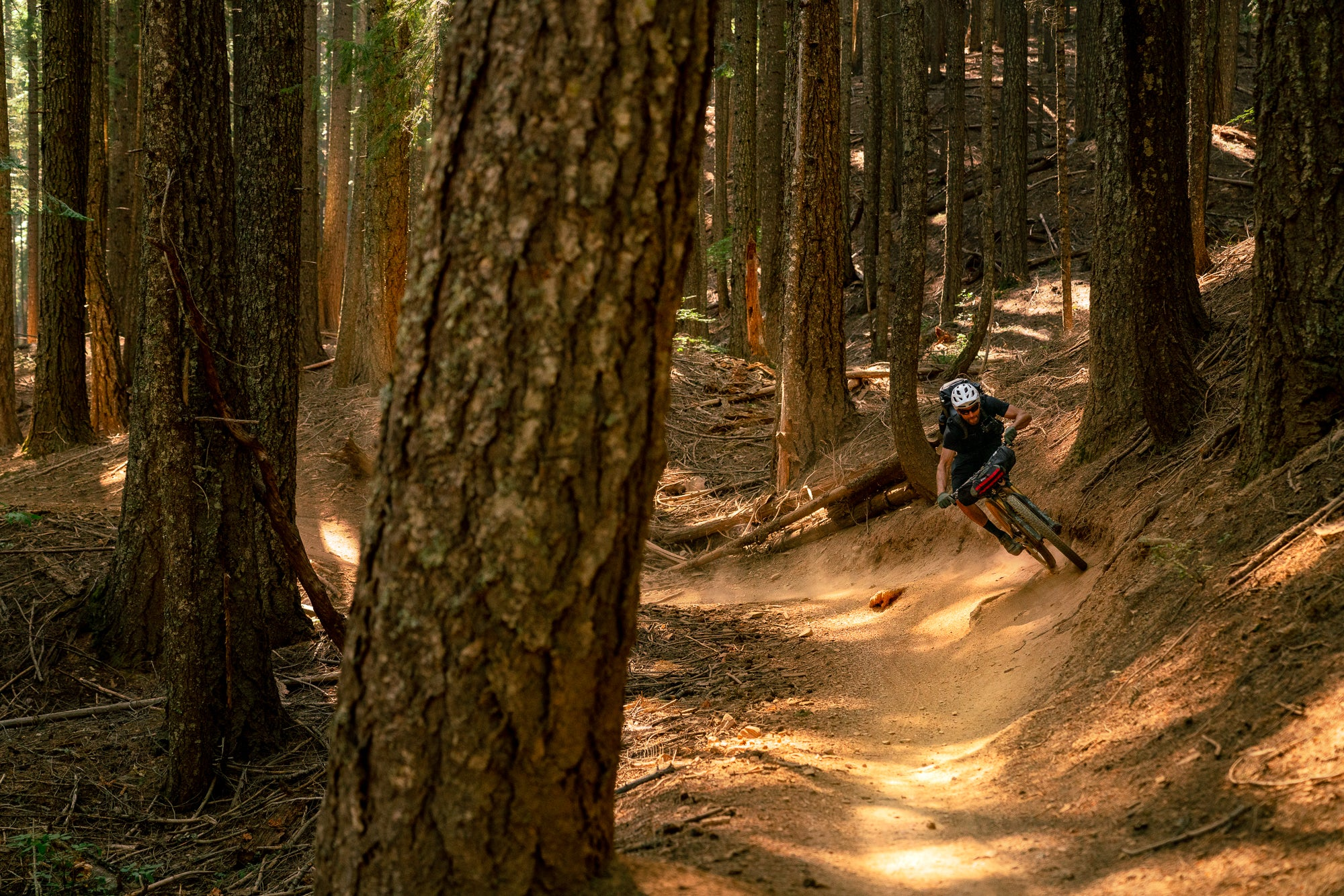 Mountain Biker Riding through the Forest