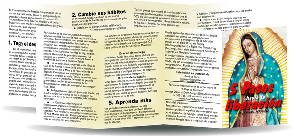 Keys to Freedom from Sexual Sin - 8pg mini pamphlet (p) - ( CATHOLIC Spanish version)
