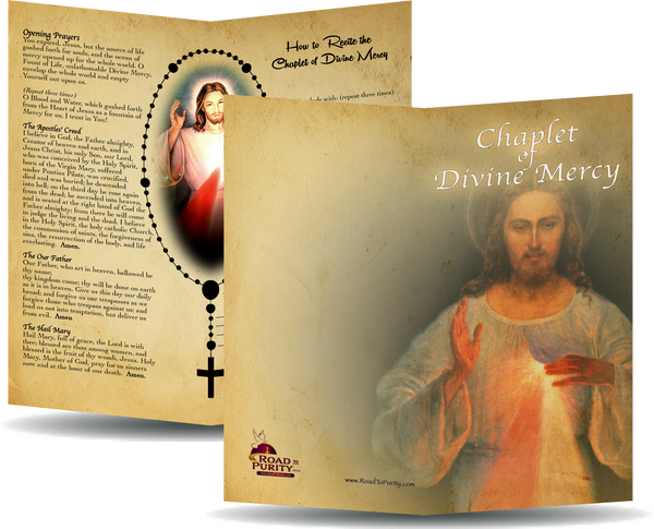 "Chaplet of Divine Mercy - Prayer Card / 3x 6"" folded  (b)"