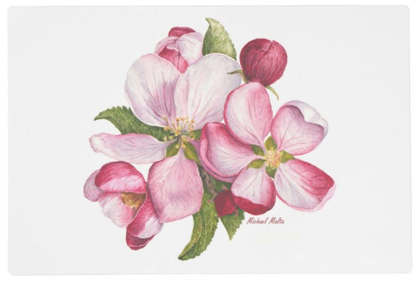 Apple Blossoms - Placemats