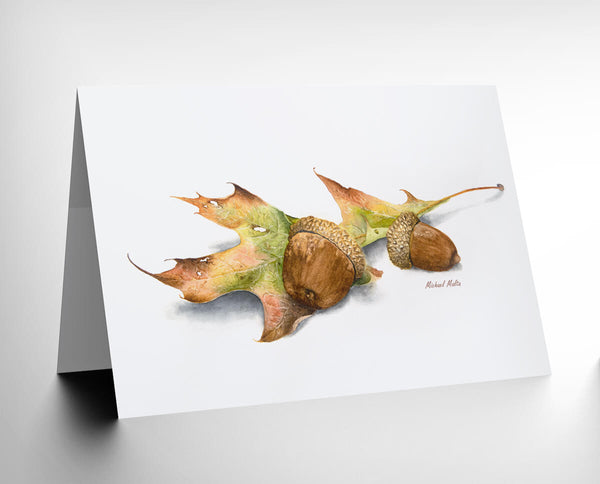 Autumn Oak and Acorns - Greeting Card