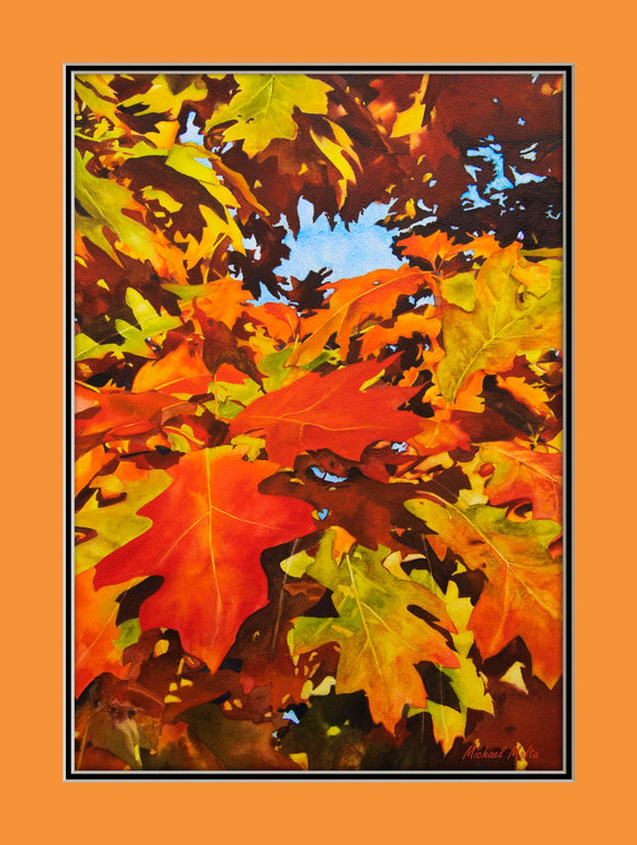 Burst Of Autumn Matted Prints