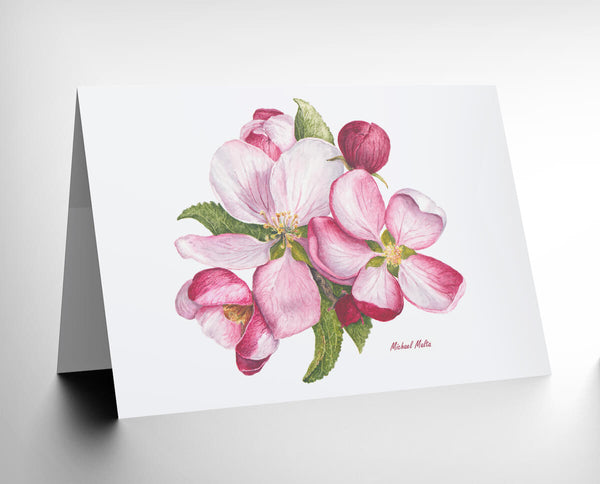 Apple Blossoms - Greeting Card