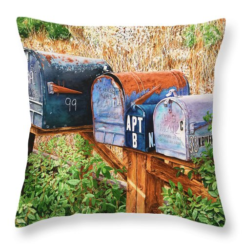 You Got Mail - Throw Pillow