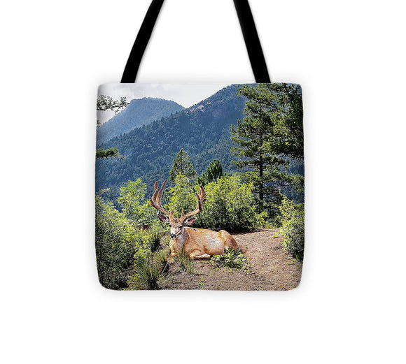 Taking A Break - Tote Bag
