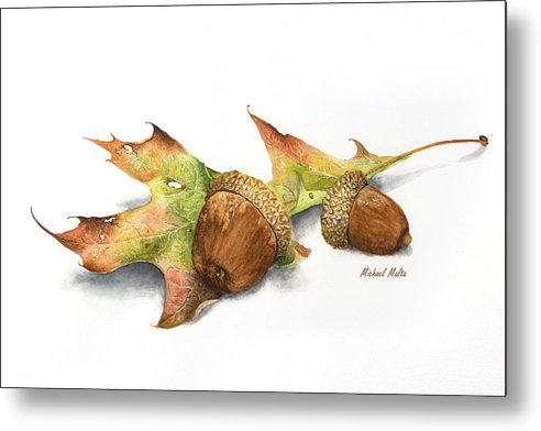 Autumn Oak And Acorns - Metal Print