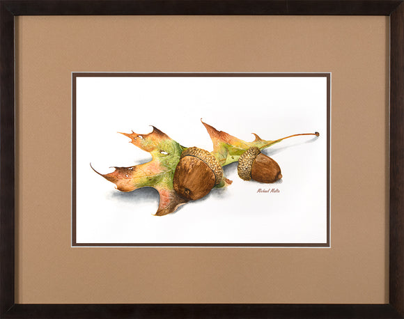 Autumn Oak and Acorns - Original