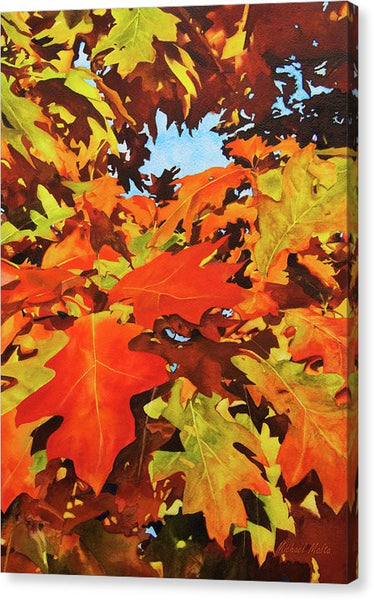 Burst Of Autumn - Canvas Print