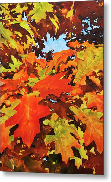 Burst Of Autumn - Metal Print