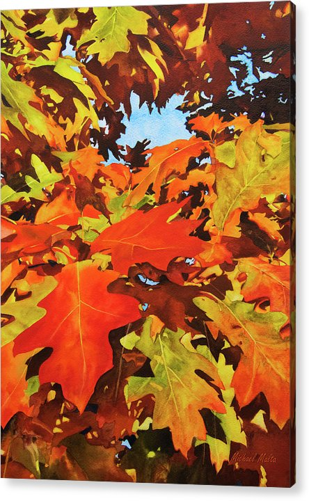 Burst Of Autumn - Acrylic Print