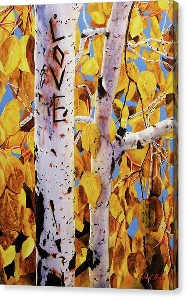 Quaking Aspens - Canvas Print