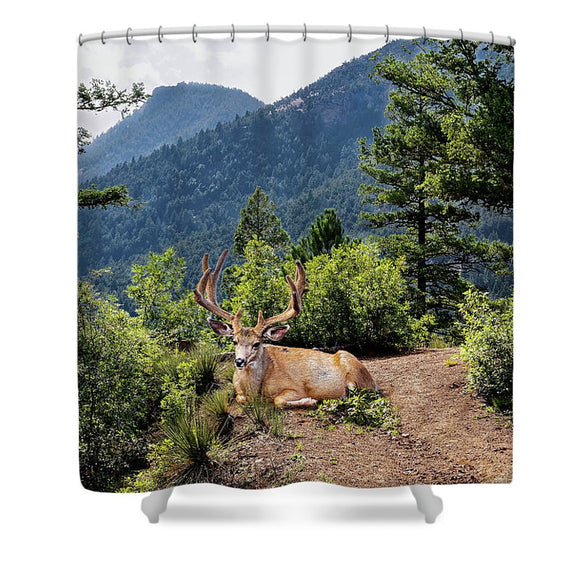 Taking A Break - Shower Curtain