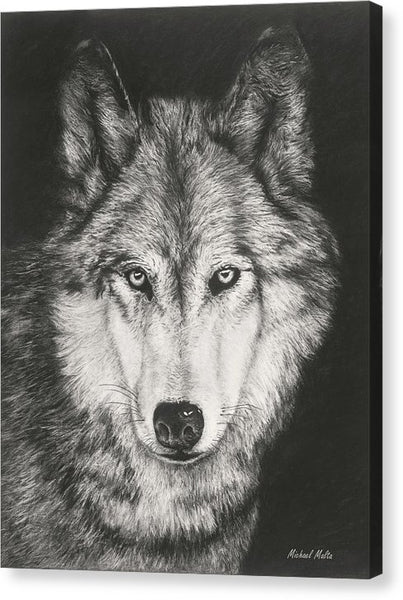 The Night Watch - Canvas Print