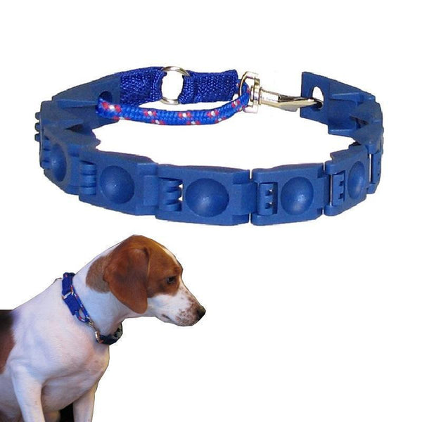 Training Dog Collar